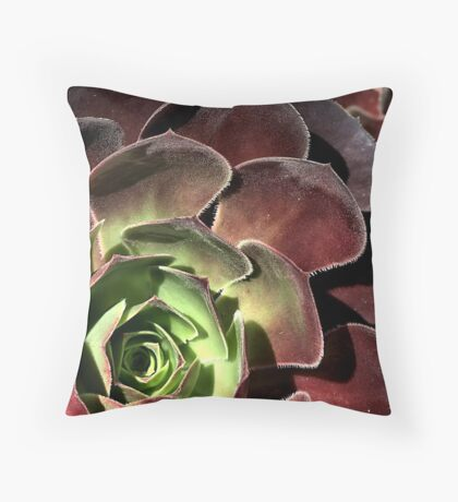 Going Cactus  Throw Pillow