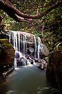 ~ chasing waterfalls ~ by Adriana Glackin