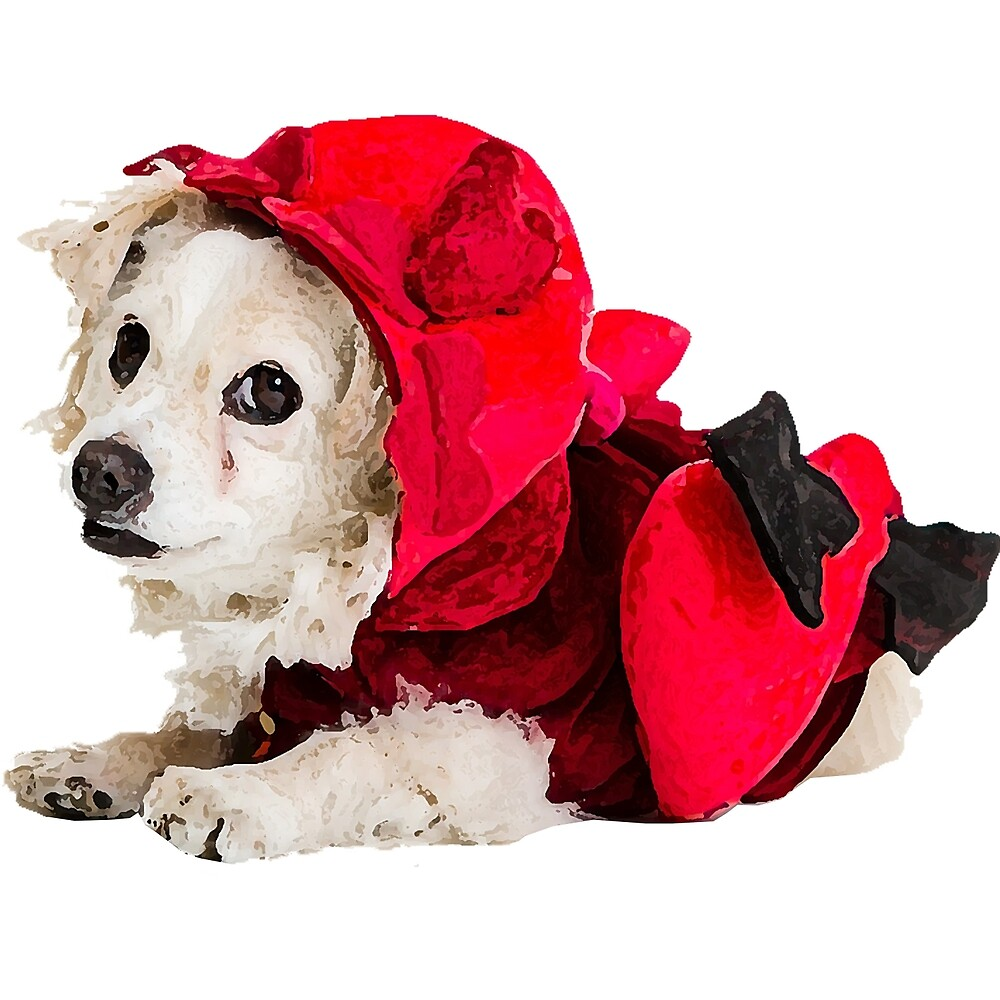 """Happy Valentine's Day! Dog """"Dio"""" in Cupid Costume - Faith and Truth by GundW"""