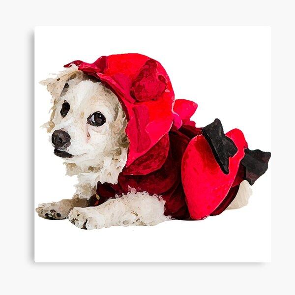 """Frohen Valentinstag! Hund """"Dio"""" im Amor-Kostüm - Glaube und Wahrheit Leinwanddruck"""