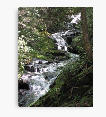 Waterfalls - North Carolina Canvas Print