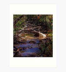 Painted Water Scene ! Art Print
