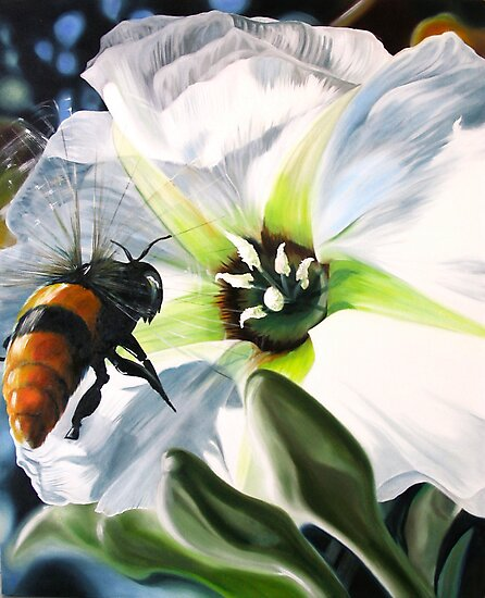 """""""Bee-ing There"""" - large Mexican bee on a white blossom by James  Knowles"""