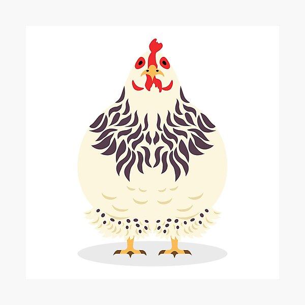 Cute Chicken Photographic Print