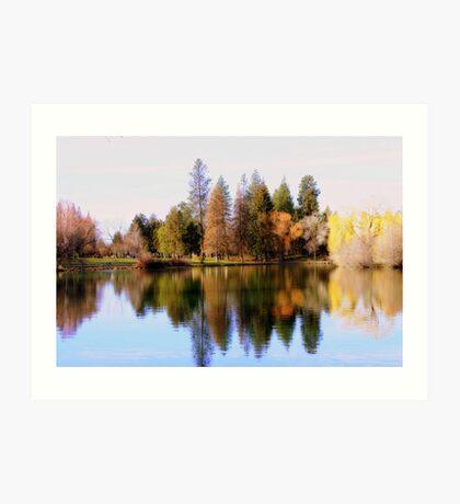Tree Reflections #2 Art Print