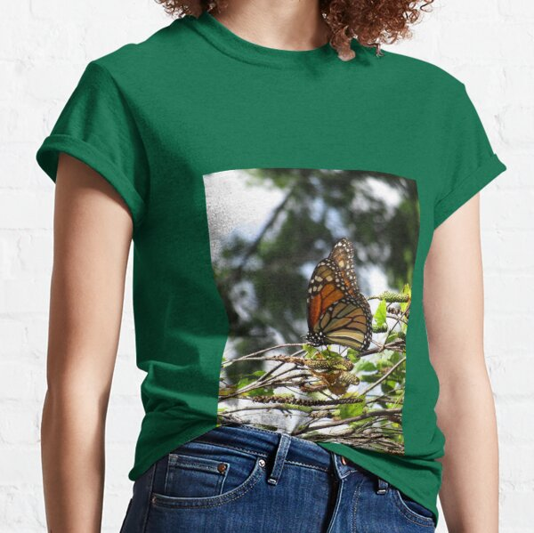 Monarch butterfly before flying in search of sun By Yannis Lobaina Classic T-Shirt