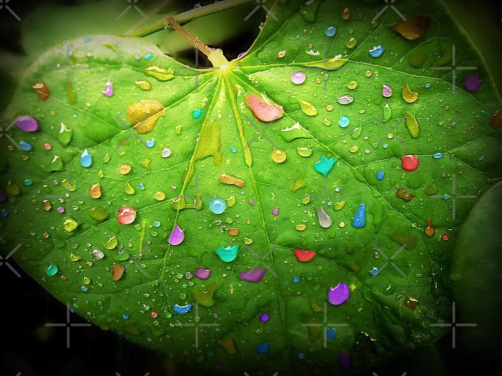Colorful Rain by FrankieCat