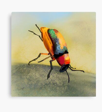 Acrobat Beetle Canvas Print