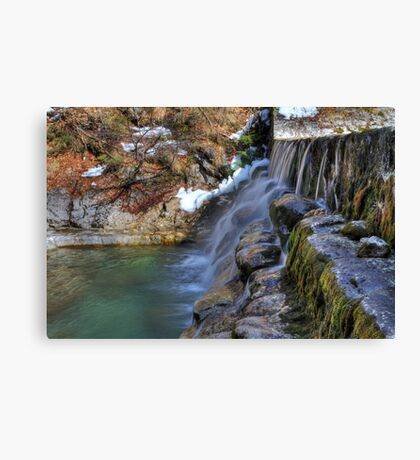 Water Steps Canvas Print