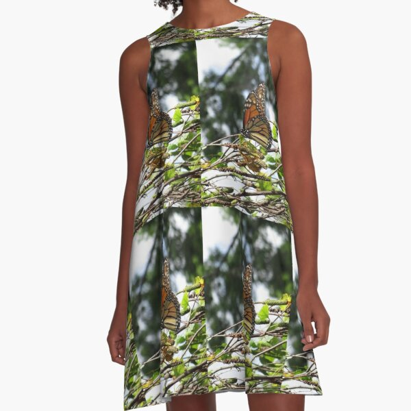 Monarch butterfly before flying in search of sun By Yannis Lobaina A-Line Dress