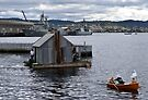 Elegant houseboat, anyone? by Odille Esmonde-Morgan