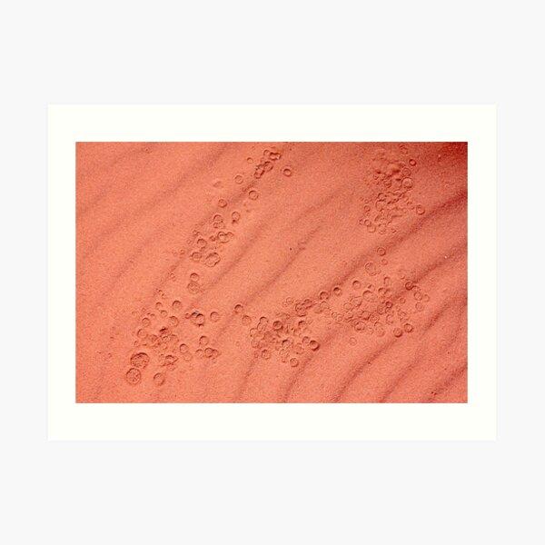 deserted drops on lunar ground Art Print
