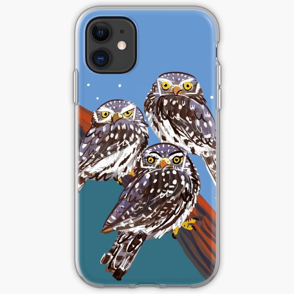 Northern Pygmy owl Funda y vinilo para iPhone