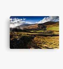 The Cheviot, Northumberland National Park. UK Canvas Print