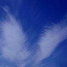 BLUE ANGEL WINGS...CLOUDS by RoseMarie747