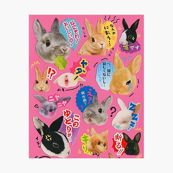 Cute Bunny Japanese reactions Photographic Print