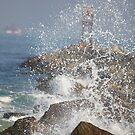 Spray On The Rocks by Deborah  Benoit