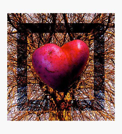 Tree art Photographic Print