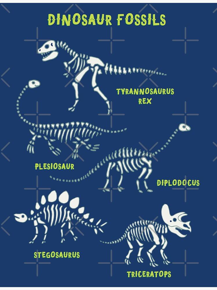 Dinosaur Fossils - Blue - Fun graphic pattern by Cecca Designs by Cecca-Designs