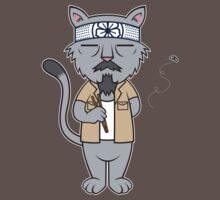 Mr.Meowgi