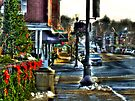 Downtown Chagrin Falls by Marcia Rubin