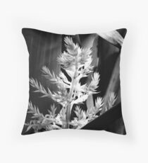 In the shadows #2 Throw Pillow