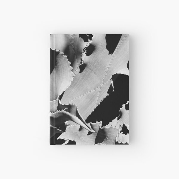 Succulent in black and white Hardcover Journal