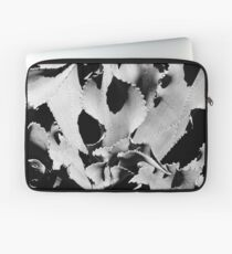 Succulent in black and white Laptop Sleeve