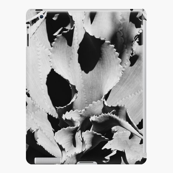 Succulent in black and white iPad Snap Case
