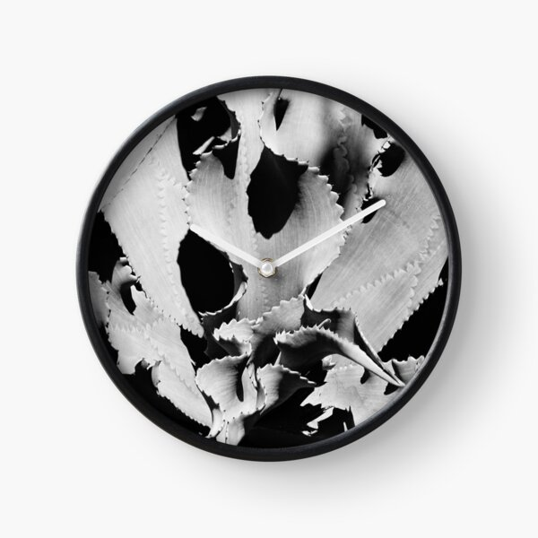 Succulent in black and white Clock