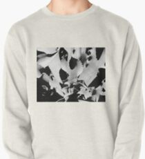 Succulent in black and white Pullover Sweatshirt