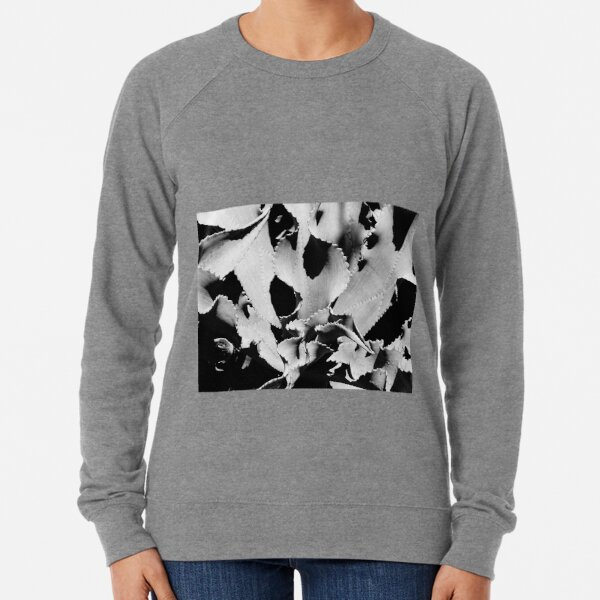 Succulent in black and white Lightweight Sweatshirt