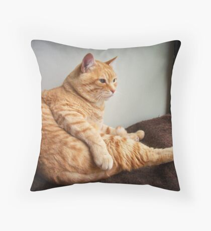 Is it Caturday yet? Throw Pillow