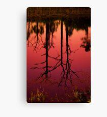 Ilona's Pond Canvas Print