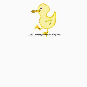 Ducks by smarton