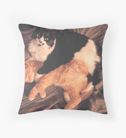 Kitty Cat Cuddle Throw Pillow