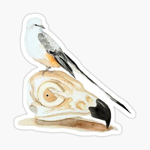 Bird of Pray Sticker