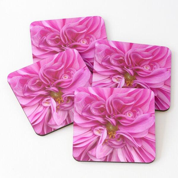 Curly Dahlia Coasters (Set of 4)