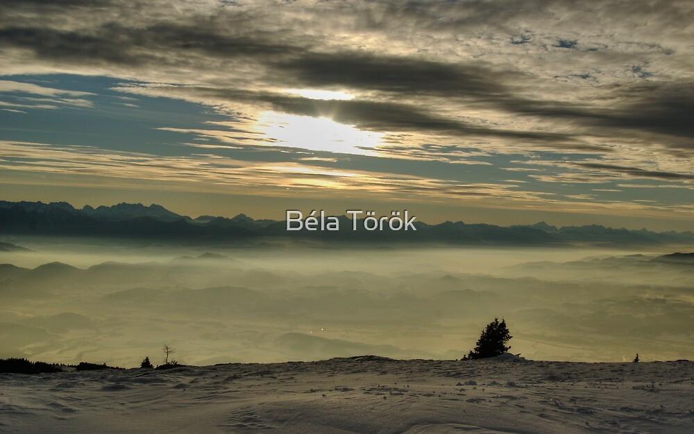 Fog in the valley by Béla Török
