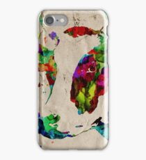 Colorful Cow Rainbow 2 - Prints and Posters by Robert Erod iPhone Case/Skin