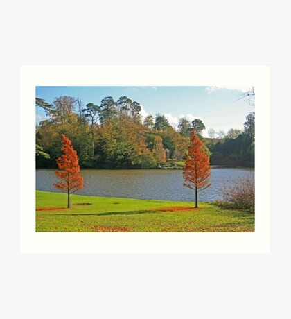 Bowood Lake Art Print