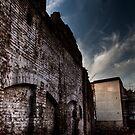 Ruins by Davide Ferrari
