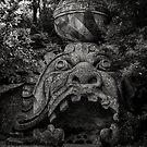 Sculpture, Sacro Bosco di Bomarzo, Viterbo. Lazio, Italy by Andrew Jones