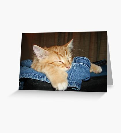 Jeans Are For Sleeping  Greeting Card