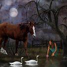 Swan Lake Paradise by George Lenz