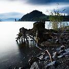 Lake Vyrnwy by Paul Whittingham