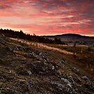 Haughmond View by Paul Whittingham