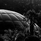 1983 - landed in paradise by Ursa Vogel