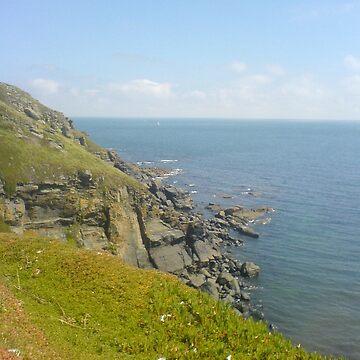 Cornish Coast by wannabewriter81