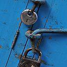 Locks by Peter Hammer